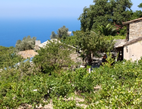 travelling like a local in the Mediterranean