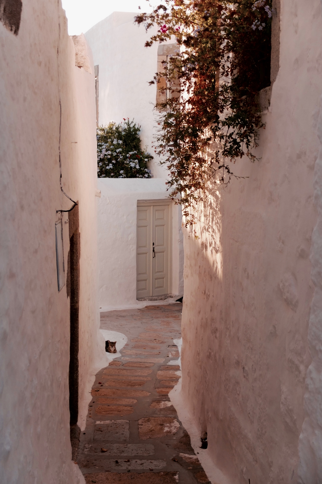 mediterranean wanderer, paula hagiefremidis, creative retreats, retreats, greek islands, writing workshop, The Best Holiday Destination to Unlock Your Creative Confidence